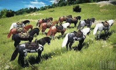 игры лошади фото